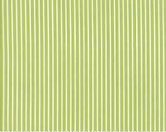 Smitten (55173 16) Green Pinstripe Bonnie & Camille