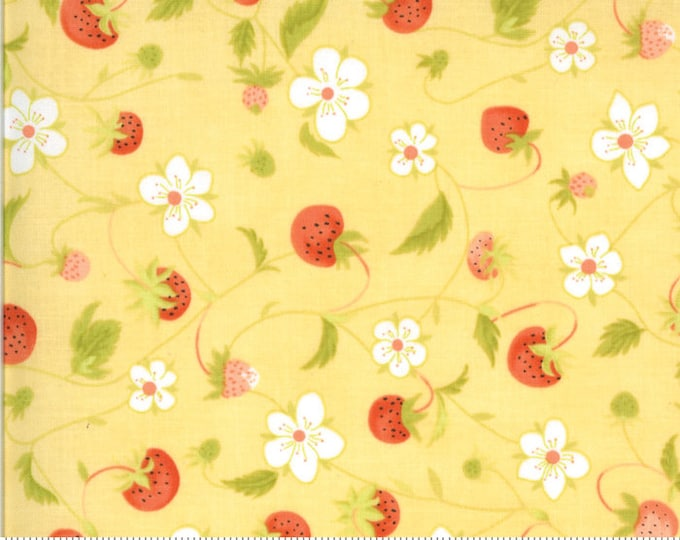 Chantilly Daisy Raspberries by Fig Tree & Co. for Moda (20341-13)