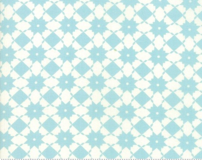 Garden Variety (5072 13) Blue Sky Bright Side by Lella Boutique