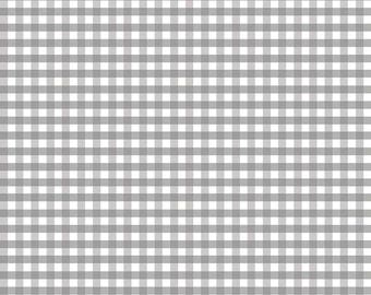 Riley Blake Designs, Medium Gingham in Gray (C450 40)
