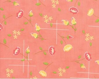 Lulu Lane (29021 14) Peach Meadow by Corey Yoder