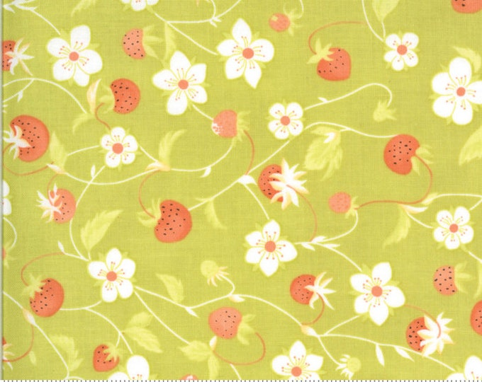 Fig Tree Chantilly Sprout Raspberries by Fig Tree & Co. for Moda (20341-18)