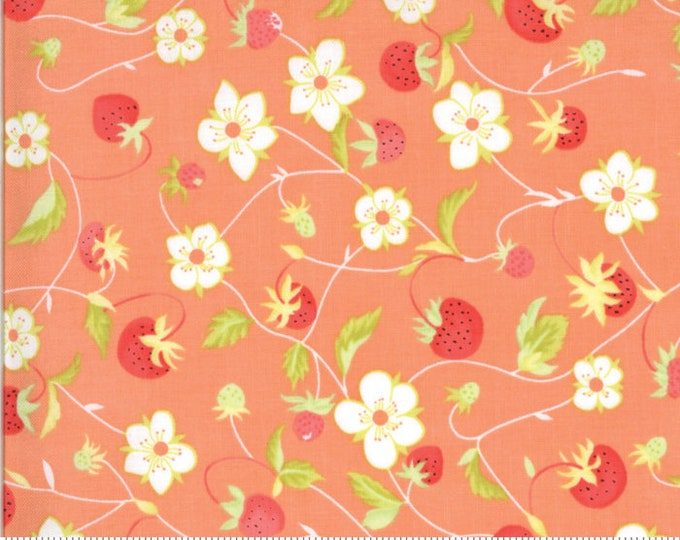 Fig Tree Chantilly Gerbera Raspberries by Fig Tree & Co. for Moda (20341-11)