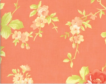 Fig Tree Chantilly Gerbera Cabbage Rose by Fig Tree & Co. for Moda (20340 11)