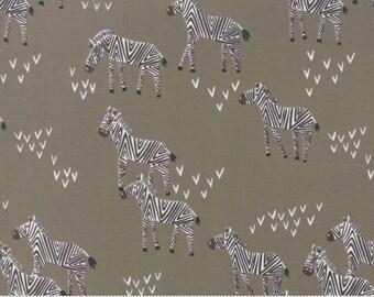 Safari Life Black Ash Grazing Zebra by Stacy Iest Hsu for Moda Fabrics  (20645 13) - Animal Fabric - Cut Options Available