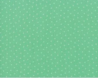 Strawberry Jam Rainy Day Plus by Corey Yoder (Little Miss Shabby) for Moda (29067 38)