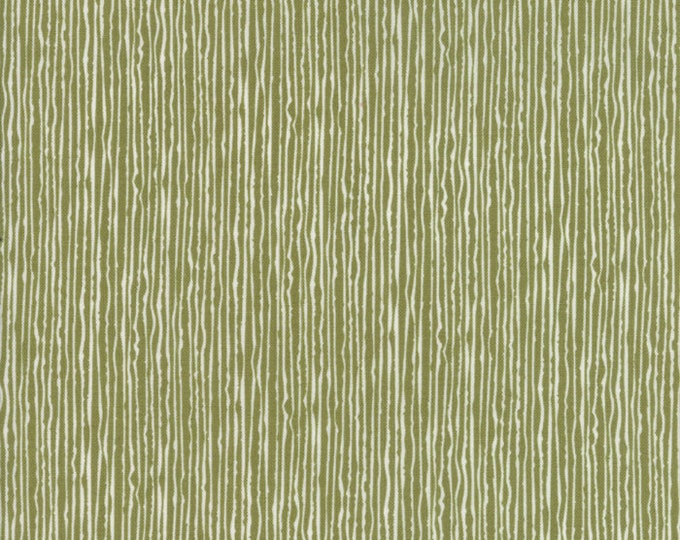 Overnight Delivery (5706 22) Green Candy Stripe by Sweetwater