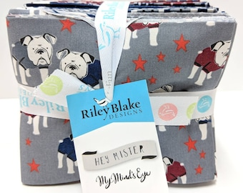 Hey Mister Fat Quarter Bundle by My Minds Eye (FQ-7550-21)