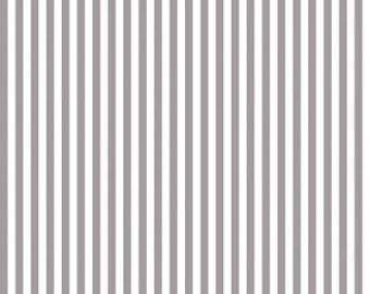 Riley Blake Designs, 1/4 Inch Stripe in GRAY (C555)