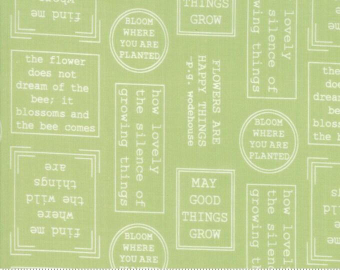 Lollipop Garden Flowerspeak - Apple - Lollipop Garden by Lella Boutique - (5081 16)