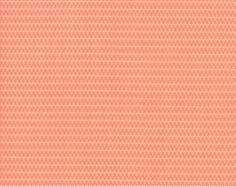 Clover Hollow (37556 20) Peachy Loop De Loops by Sherri and Chelsi