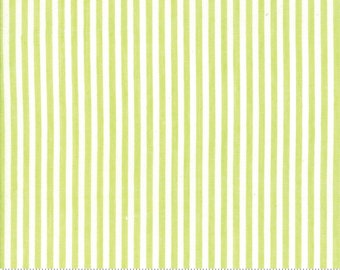 Bonnie and Camille Wovens Green Stripe for Moda Fabrics  (12405 39) - Green Striped Fabric - Woven Fabric