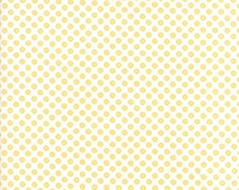 Pepper & Flax (29045 16) Eyelet Polka Dot by Corey Yoder
