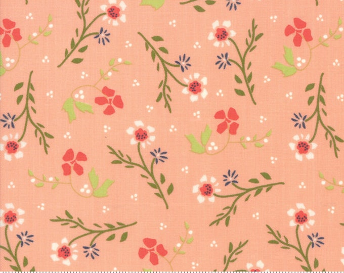 Walkabout Peachy Dandelion (37562-15) by Sherri and Chelsi for Moda Fabrics