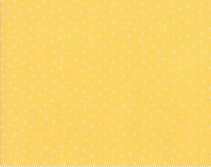 Strawberry Jam Sunshine Plus by Corey Yoder (Little Miss Shabby) for Moda (29067 34)