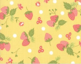 "Strawberry Jam Lemonberry Strawberry Polka Dot by Corey Yoder (Little Miss Shabby) for Moda (29062 15) - 33"" remnant"