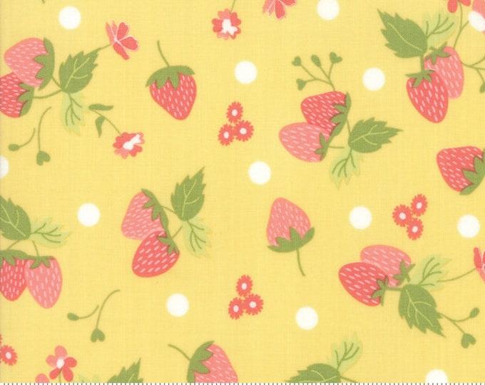 Strawberry Jam Lemonberry Strawberry Polka Dot by Corey Yoder (Little Miss Shabby) for Moda (29062 15)