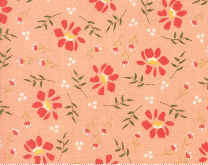 Walkabout Peachy Morning Glory (37561-15) by Sherri and Chelsi for Moda Fabrics