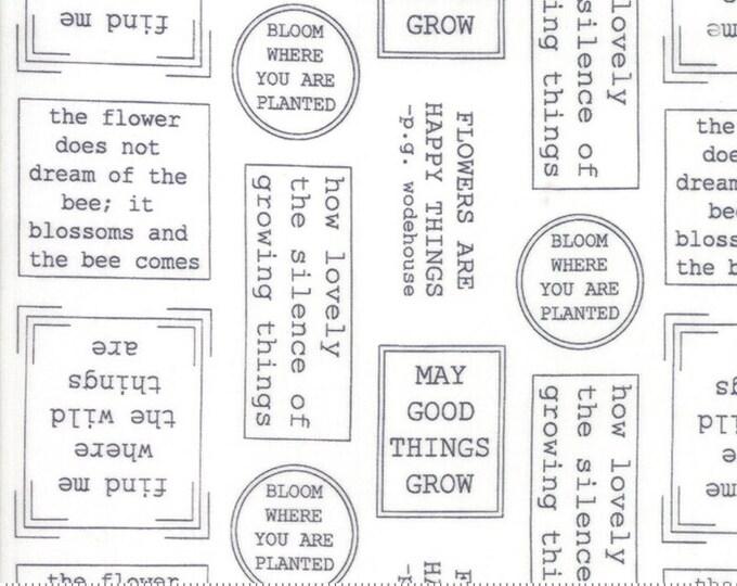 Lollipop Garden Flowerspeak - Chalk - Lollipop Garden by Lella Boutique - (5081 11)