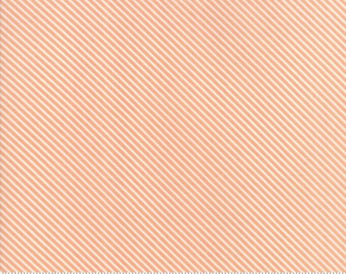 Garden Variety (5075 18) Apricot Candy Stripe by Lella Boutique