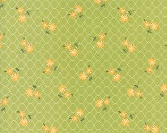 Pepper & Flax (29041 18) Sprig Daisy Days by Corey Yoder