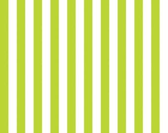 Lime Half Inch Stripe by Riley Blake Designs (C530) - 1/2 yard