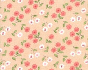 Nest (5062 19) Blush Classic Blossom by Lella Boutique