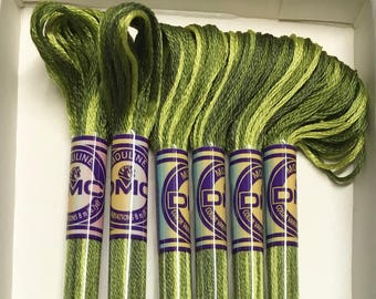 DMC 4066 Amazon Moss Variegated Colors Embroidery Floss 1 Skein 6 Strand Thread for Embroidery Cross Stitch Needlepoint Sewing Beading