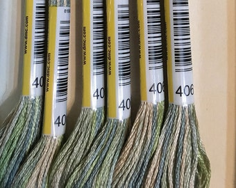DMC 4065 Morning Meadow Color Variations Embroidery Floss 1 Skein 6 Strand Thread for Embroidery Cross Stitch Needlepoint Sewing Beading