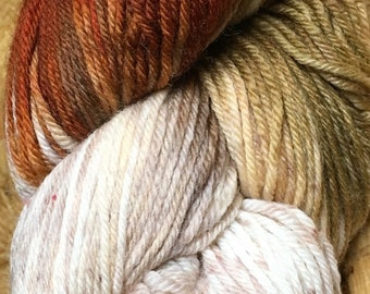Araucania Huasco Sock Yarn Hand Painted Superwash Wool Polyamide Super Fine Fingering Weight Yarn Color 1001 Capuchinbird