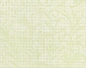 """Perforated Paper for Needlework Scrapbooking Jim Shore Flourish Spruce Stylized Perforated Paper by Mill Hill 9""""X12"""" 2 sheets per pkg PP502"""