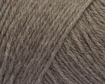 Wildfoote Luxury Variegated Sock Yarn Brown Sheep Company 215 yards 50 grams Fingering Weight Washable Wool and Nylon Mums Color 09
