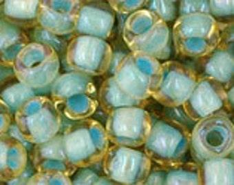 6/0 Rainbow Light Topaz Seafoam Green Lined Toho Glass Seed Beads 2.5 inch tube 8 grams TR-06-952