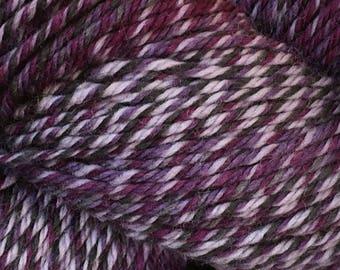 Nightshade Cascade 220 Superwash Wave Yarn 220 yards 100% SuperWash Wool Color 111