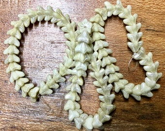Ivory Czech Pressed Glass Five Petal Bell Flower Star Flower Beads with Silver Mercury Look Finish 6mm x 9mm 25 beads
