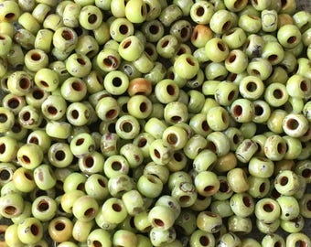 8/0 Chartreuse Picasso Miyuki Stone Look Seed Beads Japanese Beads 6 Inch Tube 28 grams 4515