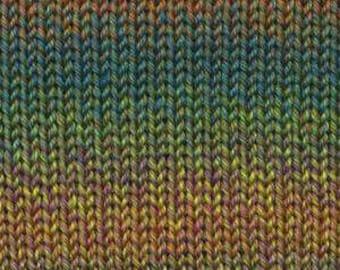 Rainbow Beach Sea Grass by Queensland Collection Sport Weight 100% Australian Superwash Wool  328 yards