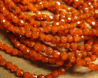 Orange Brick Czech Glass Fire polished Crystal Beads 4mm Approx 50 beads