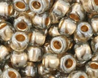 6/0 Gold Lined Black Diamond Toho Glass Seed Beads 2.5 inch tube 8 grams TR-06-993