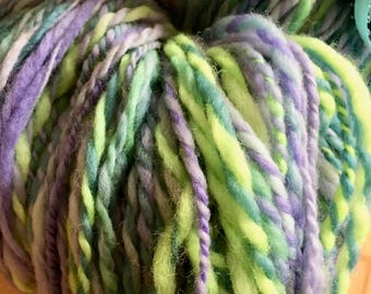Clearance Spring Peeper Pond Hand Spun Yarn 2 Ply Worsted Weight Merino Wool by Housecats Hats 374 yards