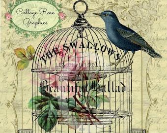 Vintage Bird cage Swallows Large digital download ECS buy 3 get one free pink roses printable