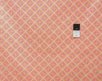 ON SALE Joel Dewberry PWJD059 Notting Hill Frames Tangerine Cotton Fabric 1 Yard