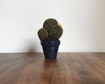 Crochet Cactus for Home Decor/Interior Decor/Creative Space by MrFunkyo