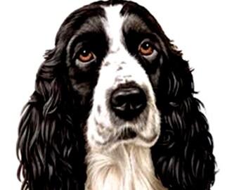 Dog Spaniel Welsh Springer Fabric Panel Make A Cushion Upholstery Craft