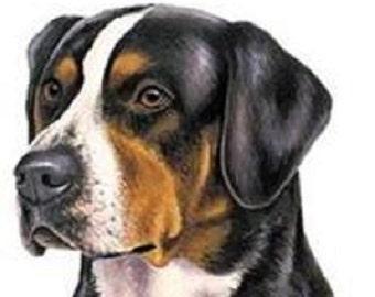 Swiss Mountain Dog Etsy
