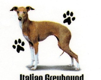 """ITALIAN GREYHOUND Fabric with Paws. Actual picture is approx 11"""" x 11"""" on ONE 18"""" x 22"""" Fabric Panel To Sew or Quilt.  Sale!"""