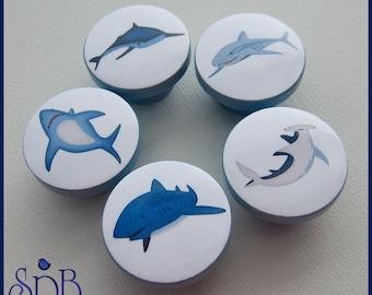 Shark Knobs • Drawer Knobs • Hammerhead Shark • Shark Knobs • Drawer Pulls • Sharks • Great White Shark • Dresser Knobs