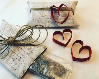 Seeds of Gratitude - Upcycled Handpainted Toilet Paper Roll Pillow Box with Wildflower Seeds and Heart Detail - Eco-Friendly