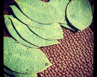 Wildflower Seeded ~ Handmade Paper Leaf Favors - 50 favors ~ 3 inch