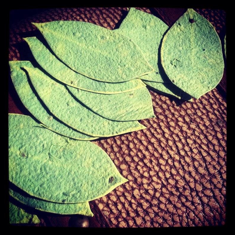 Wildflower Seeded  Handmade Paper Leaf Favors  50 favors  3 image 1